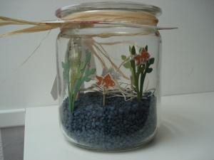 Aquarium für das Geld